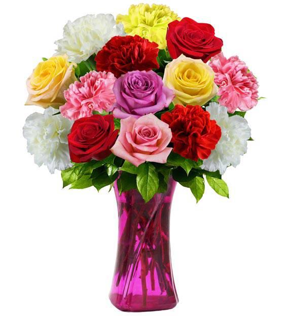 Rose & Carnation - Farm Fresh