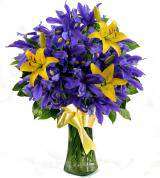 Divine Iris and Lilies