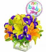 Precious Baby Bouquet - Girl