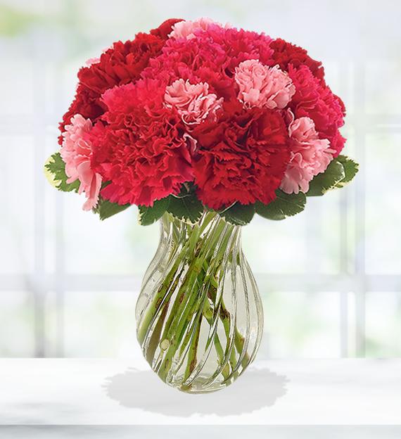 Romantic Carnation Bouquet