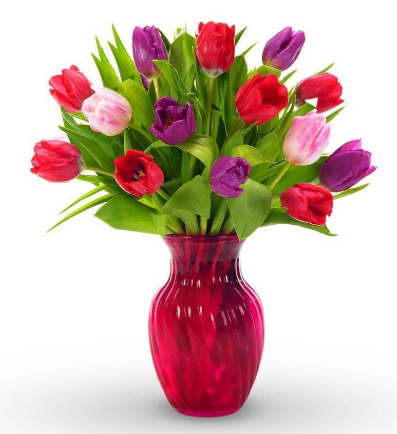 Sweet Surrender Tulip Bouquet