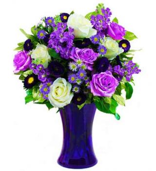 Vivid Violet and White